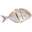 nutrition-fish