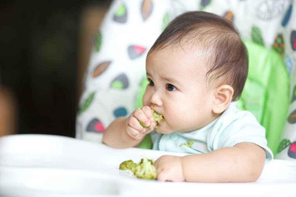 Brokoli bisa selalu menjadi alternatif sayuran