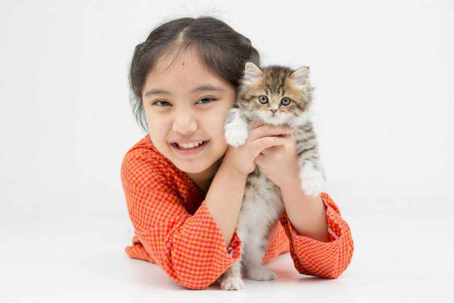 87 Gambar Hewan Untuk Anak Kecil Terbaik