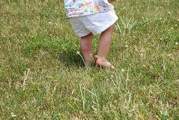 5 Pertolongan Pertama Saat Anak Terkena Gigitan Serangga