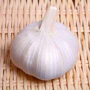 Bawang Putih, Si Mungil yang Kaya Manfaat Kesehatan