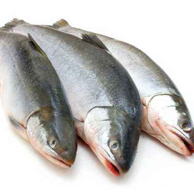Cara Memilih Ikan yang Baik untuk Anak
