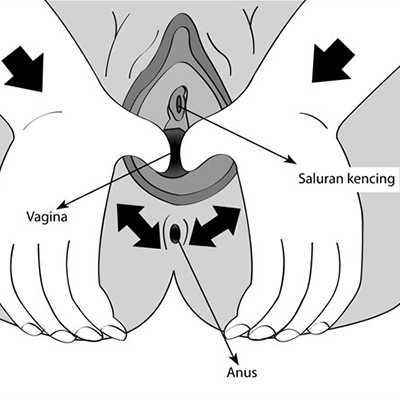 Image result for pijat vagina cartoon