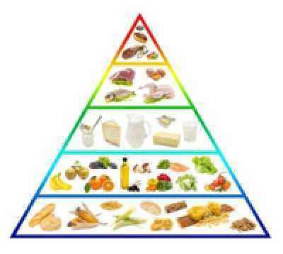 Membiasakan Makan Sehat