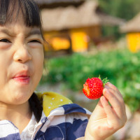 Kenali 4 Penyebab Anak Pilih-pilih Makanan
