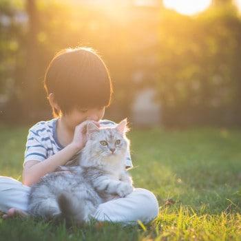 Cara Simpel untuk si Kecil Bantu Rawat Peliharaan