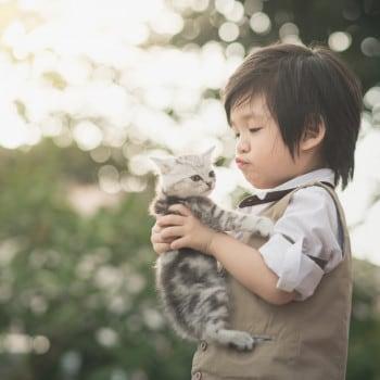 Manfaat Hewan Peliharaan bagi Perkembangan Psikologis si Kecil
