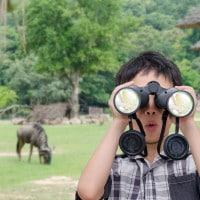 4 Manfaat Pergi ke Kebun Binatang untuk si Kecil