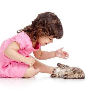 4 Kebiasaan Baik Hewan yang Bisa Dicontoh si Kecil